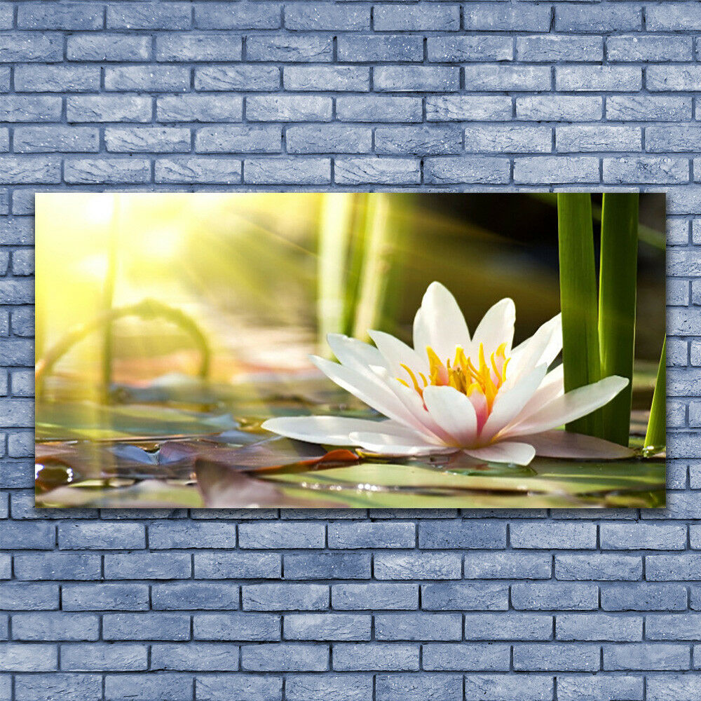 Glass print Wall art 140x70 Image Picture Flower Flower Flower Floral 50a505