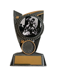 Cage Fighting MMA Mixed Martial Arts Trophy Award ENGRAVED FREE in 2 Sizes