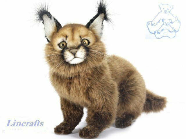 Hansa Sitting Caracal Cat 7047 Plush Soft Toy Sold by Lincrafts Established 1993