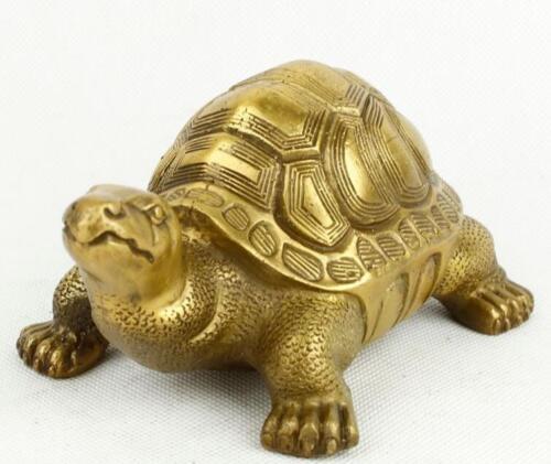 Brass copper tortoise furnishing articles feng shui turtle god turtle