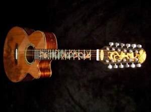 Gold dragon guitar jocelyn tink organon