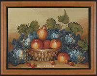 18 Framed Tapestry Fruits & Berries European Kitchen Picture - Grape Still Life