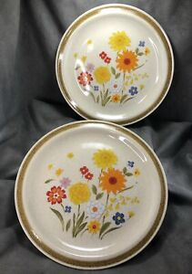TWO-Vintage-Fiesta-Pattern-Stoneware-Dinner-Plates-Montgomery-Ward-Flower-Japan