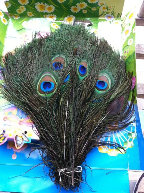 200pcs Natural Peacock Eye Feathers 10-12' For Wedding Decoration