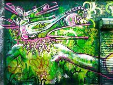 ART PRINT POSTER PHOTO GRAFFITI MURAL STREET BEAK BIRD MAN NOFL0152