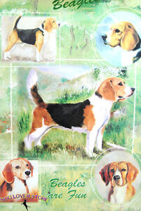 Beagle Gift Wrapping Paper