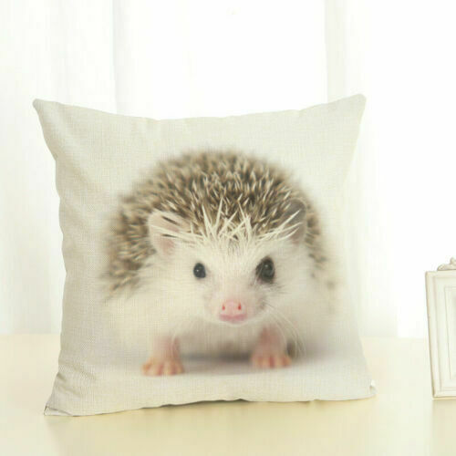 Home Decoration Cover Linen Waist Animal Koala Hedgehog Pillow Car Case Cushion