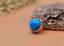 10X-10mm-Antique-Flower-Turquoise-Conchos-Leather-Crafts-Bag-Wallet-Decoration miniature 60