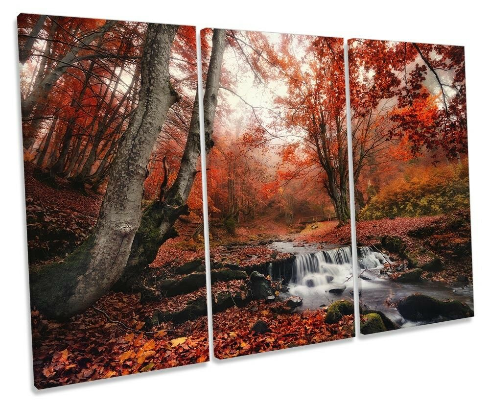 rot Landscape Woodland Picture TREBLE CANVAS WALL WALL WALL ART Print bd3323