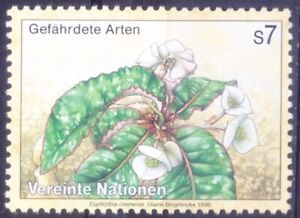 United Nations 1996 MNH, endangered species, Plants, Euphorbia cremersii