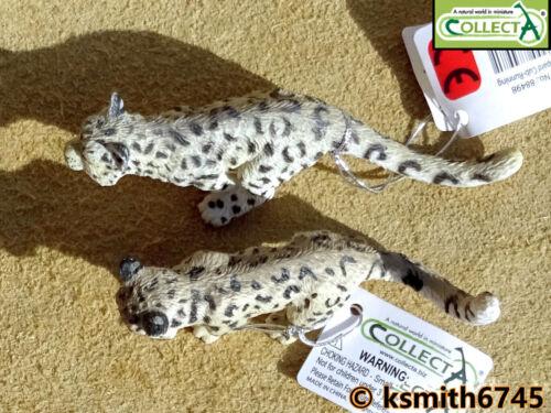 Collecta Snow Leopard Cubs di plastica giocattolo Wild Zoo Animale Gatto Predator NUOVO