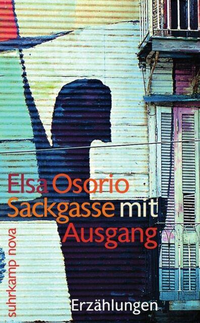Mein Name ist Luz von Elsa Osorio (2010, Taschenbuch)