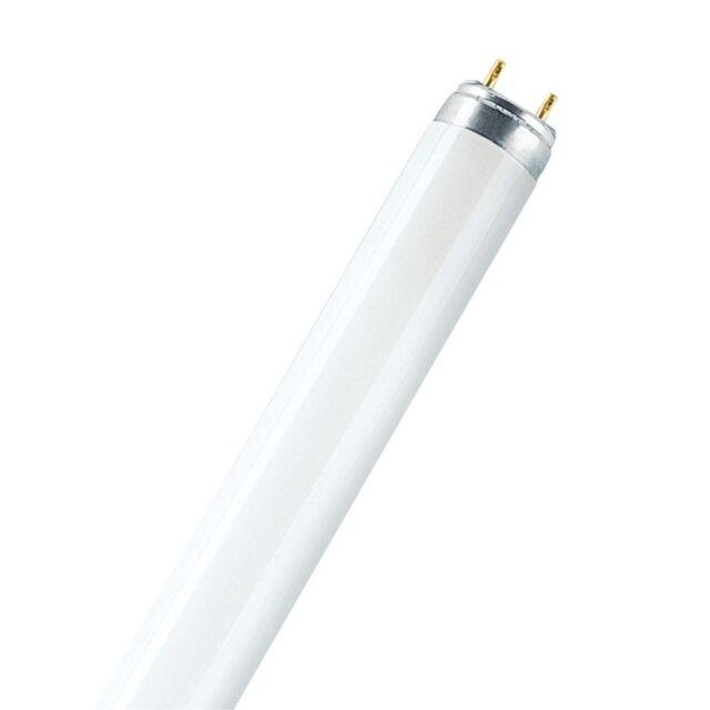 25x OSRAM tubes fluorescents LUMILUX - T8, 840 Blanc Neutre - 36 W - Lumière