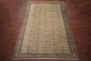 11X15-Antique-Fine-Turkish-Sivas-Area-Rug-1930-039-s-Hand-Knotted-Wool-10-6-x-15-2