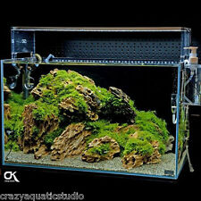Random pick 9pcs ADA Dragon stone rock aquarium Moss plant shrimp aquascaping