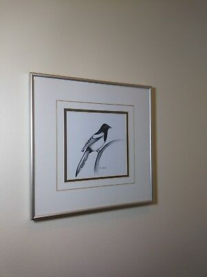 Magpie Bird On Branch Art Print
