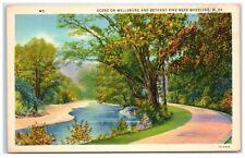 Mid-1900s Wellness and Bethany Pike near Wheeling, WV Postcard