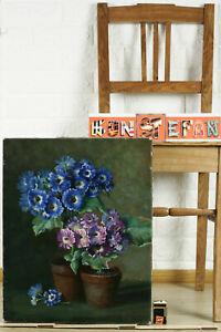 Unles-Sign-WITH-Schmidt-Oil-Painting-Antique-Still-Life-Cinerarien