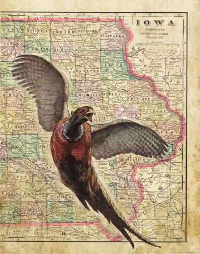 Pheasant Hunting Vintage Iowa Map Art Print Pheasants Forever Banquet MAP02