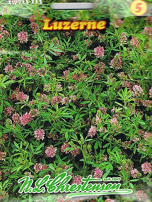 LuzerneTierfutter Gründünger Gartendoktor Gründüngung (€2,74/100gr) 27723113