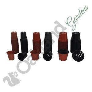Plastique-Plante-Pots-9-cm-10-5-cm-13-cm-1-LIitre-thermoforme-Tall-pleine-taille