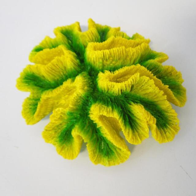 Green Lobophyllia Coral Aquarium Fish Tank Ornament Feature Decoration CW-63