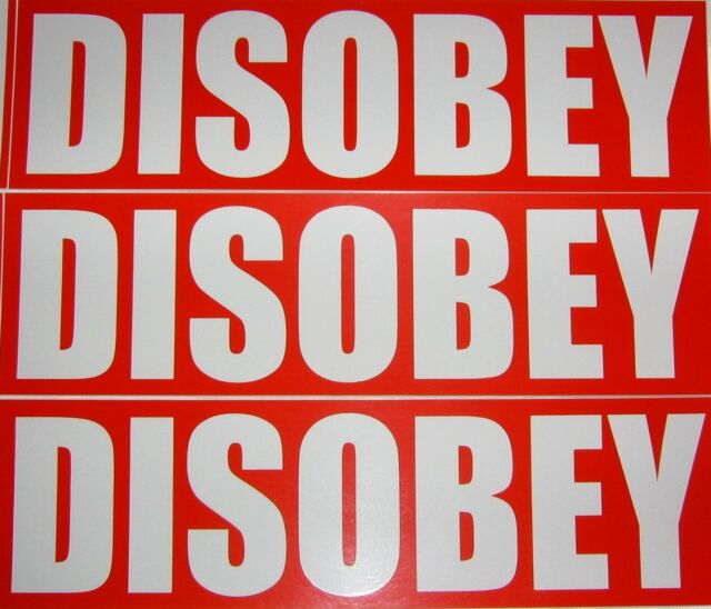 NEW 3 Disobey Stickers Occupy OWS Anonymous V for Vendetta Activist Activism