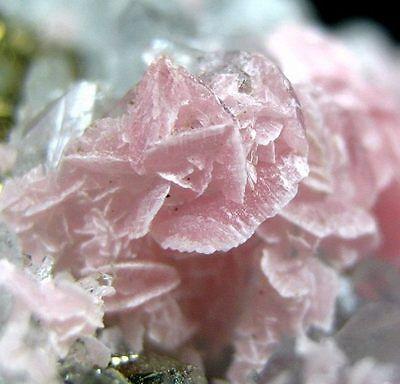 Flowery Rhodochrosite Crystal with Quartz,  Pyrite-rhgx5idz589