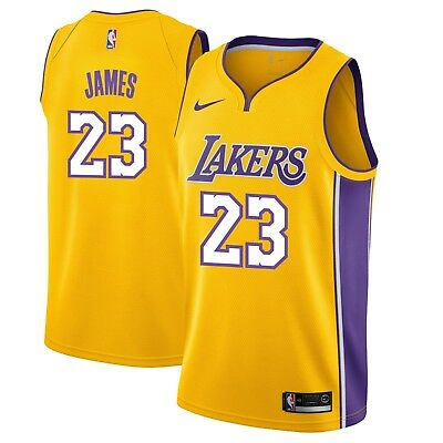 8a6b87d2084 New Nike NBA Los Angeles Lakers LeBron James  23 Swingman Icon Edition  Jersey