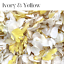 Biodegradable-WEDDING-CONFETTI-IVORY-Dried-FLUTTER-FALL-Real-Throwing-Petals thumbnail 2