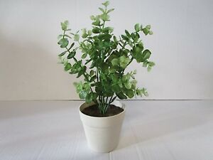 artificial potted eucalyptus plant 28cm decorative plastic plant in pot 5051211108240 ebay. Black Bedroom Furniture Sets. Home Design Ideas