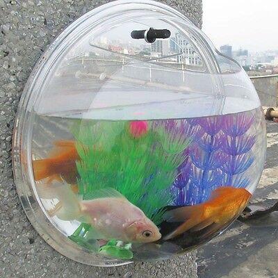 Plant Rock Wall Hanging Bubble Aquarium Bowl Fish Tank Aquarium Home Decoration