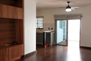 Casa en Renta Semi Amueblada en Residencial Isla Azul