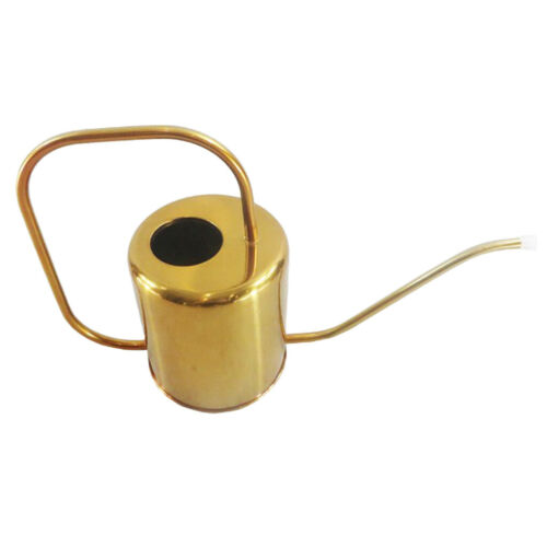 Modern 1.5L Golden Gießkanne Pflanzengießer für Zimmerpflanze Hängepflanzen