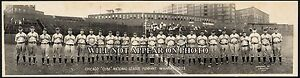1929-Chicago-Cubs-Pennant-Winners-1929-Vintage-Panoramic-Photograph-26-034-Long