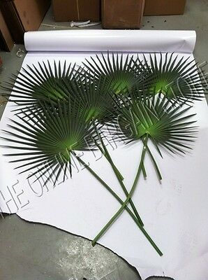 6 Pottery Barn Fan Palm Leaf Leaves Planter Arrangement Beach Ocean Sea Decor