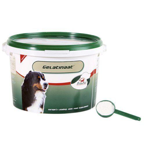 Gelatinaat 2kg Hund Zusatzfutter Zusatz Gelenke Arthrose Sehnen Bänder Bewegung