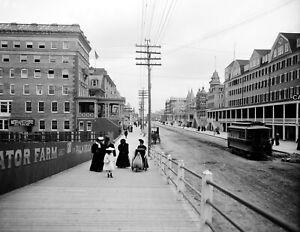 "Atlantic City Vintage Photograph 11/"" x 17/"" Reprint 1900-1915 Steeplechase Pier"