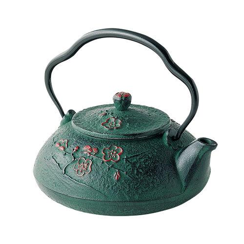 Nanbu Tetsubin  Shinonome Down - 2 couleurs-japonais en fonte Bouilloire Pot