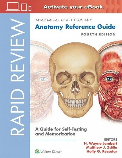 Rapid Review Anatomy Ref Guide 4e SP Book