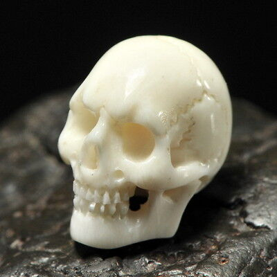 Human SKULL Carving Fine White Bovine BONE 16 mm un-drilled hand-carved in Bali