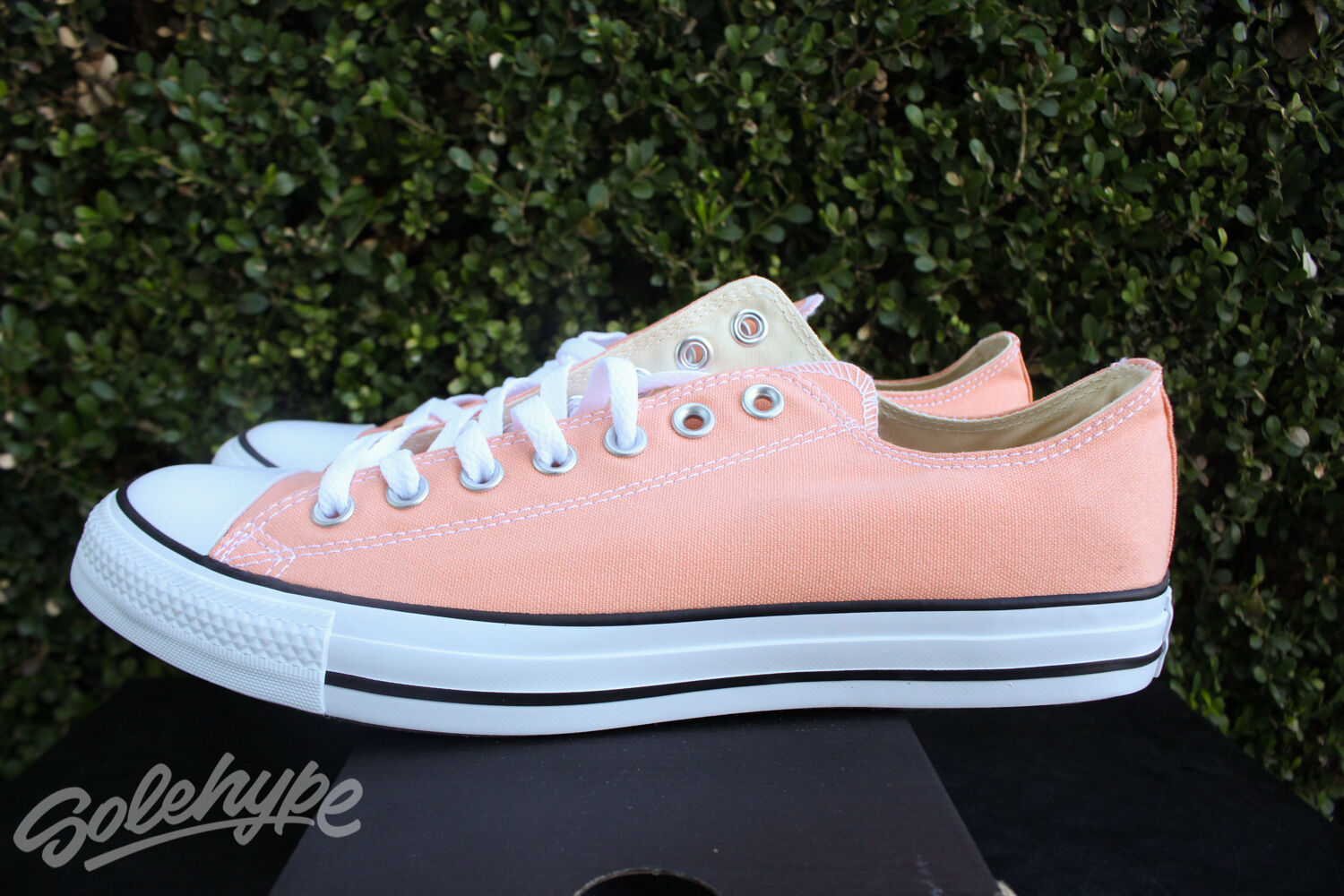 Converse chuck taylor all star bue sz sunset 8 sunset sz glow 155573f 01fee0