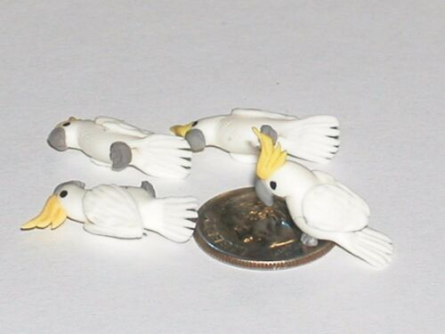 1Pc Miniature dollhouse tiny Little BIRD Rare animal Cockatoo charm finding NEW