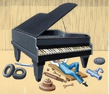 How to Repair Tuning Piano Fix Repairman Restore Home Business 19 Books CD DVD