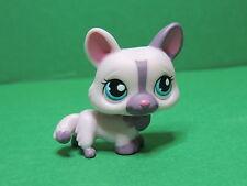 #1645 chien dog pink purple Corgi with blue eyes LPS Littlest Pet Shop Figure