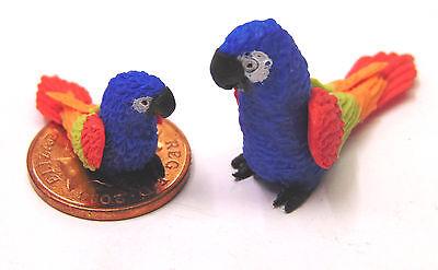 1:12 Scala Grande E Piccolo Blue Clay Pappagalli Casa Delle Bambole Miniatura Esotico Bird P3-mostra Il Titolo Originale