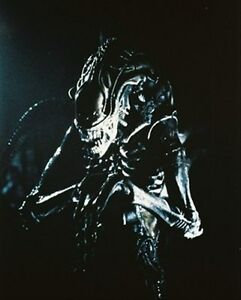 Aliens-8x10-PHOTO-Beautiful-Portrait-24748