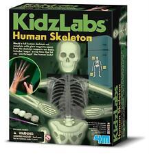 KIDZ LABS GLOW HUMAN SKELETON - GLOW-IN-THE-DARK ANATOMY SCIENCE & ACTIVITY KIT