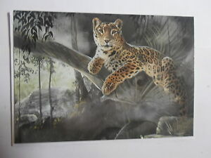 Temple-of-the-Jaguar-King-Sanctuary-blank-greetings-card-Pollyanna-Pickering