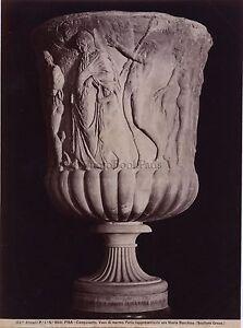 Pise-Pisa-Italie-Italia-Vase-antique-Vintage-Albumine-ca-1880